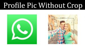 use-whatsapp-profile-picture-without-cropping-on-whatsapp