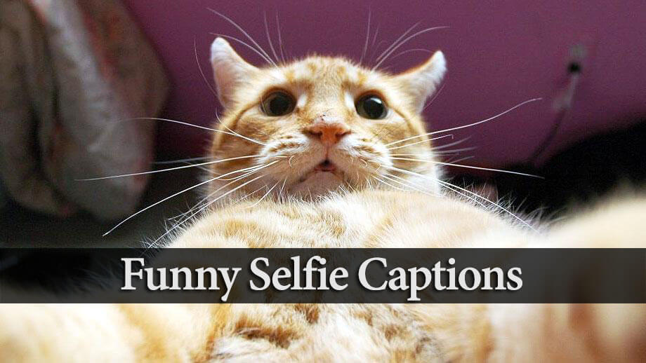 Best & Good Instagram Selfie Captions 2019 (Funny, Mirror ...